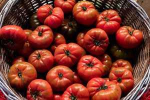 tomato ketogenic diet plan