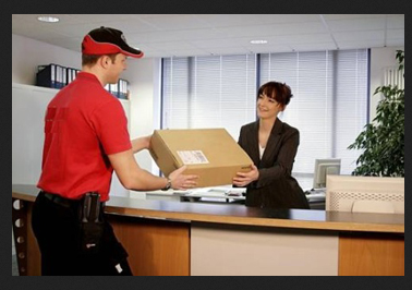 express courier service